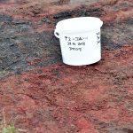 Ausschreibung einer Altlastensanierung mit hohen Dioxin Konzentrationen